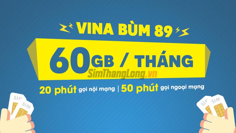 Goi cuoc VD89 cuc hot cua nha mang Vinaphone